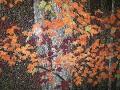 custom_mural_bigcedarlodge_02_hirschglass